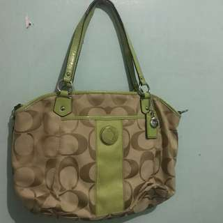 Coach Bag Green