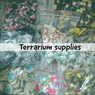 Terrarium items