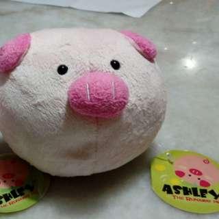 Ashley the Runaway Pig