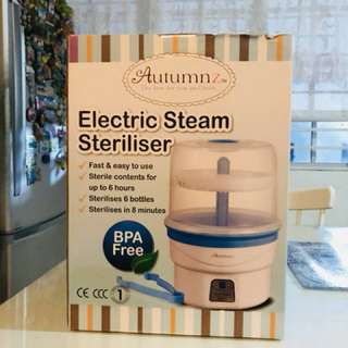 Electric Steam Stereliser