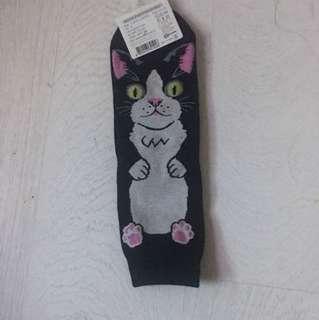 🐈 韓國襪