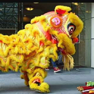 2018 CNY Dragon & Lion Dance Bookings Available Now !!
