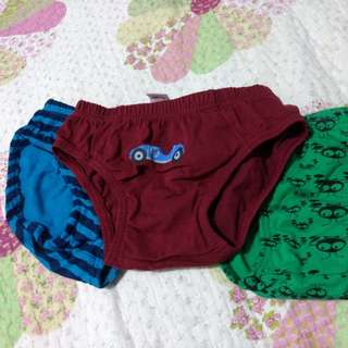 Boy's Underwear 3-4yo
