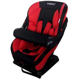 CS301 Carseat Baby