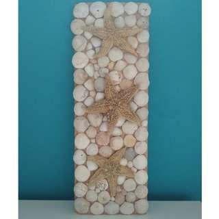 Seashell Art - Wall Deco