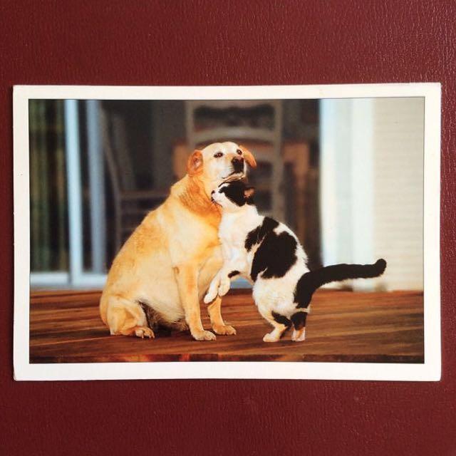 [Hallmark] Unusual Love Valentines Day Card.