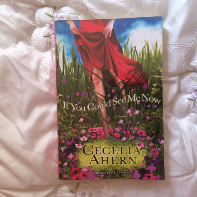 If You Can See Me Now By Cecilia Ahern