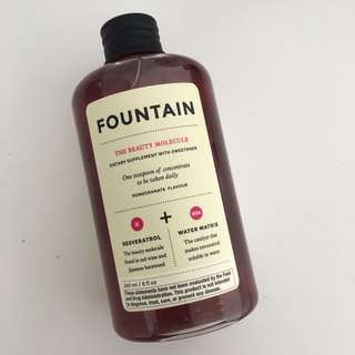 DECIEM FOUNTAIN - THE BEAUTY MOLECULE