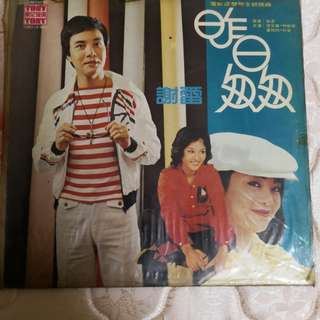 Vinyl Record大唱片