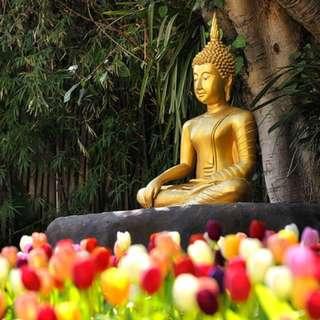 Somdej and Buddhism.....