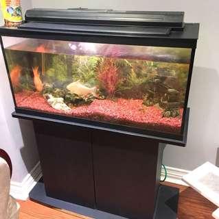 Aquarium & storage