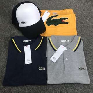 Lacoste Combo 3