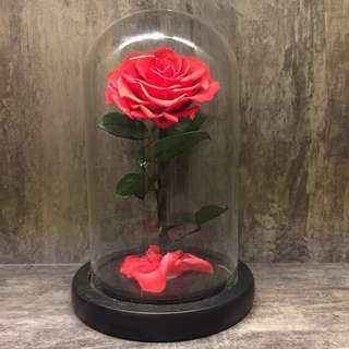 🌹Valentine's day Preserved Rose to last a long time! Actual photos