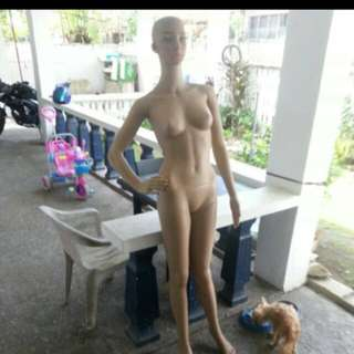 Whole Body Mannequin