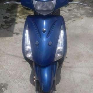 Suzuki step 2008