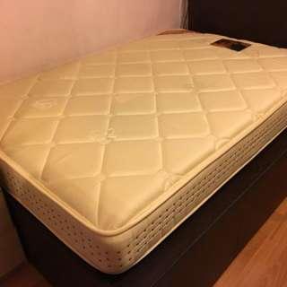 """雅蘭床褥 Airland mattress 48""""X72""""X9.5"""" Super Gold雙人超級金"""