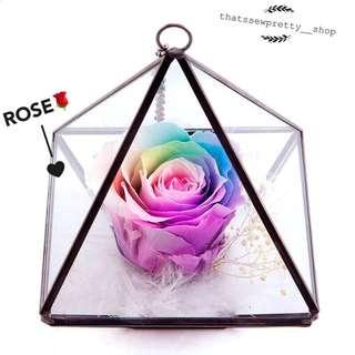 彩色永生玫瑰禮盒🎁