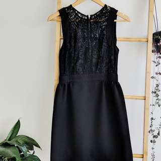 Tokito Lacy little black dress