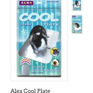 Alex cool plate (for bunnies and guinea pigs)