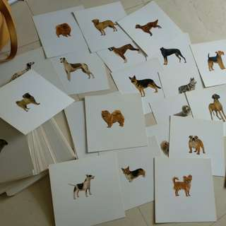 Different shades of dogs flashcard  n many others
