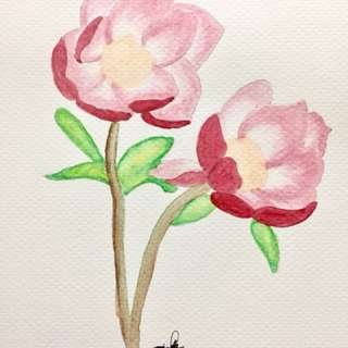 Pink watercolor painting