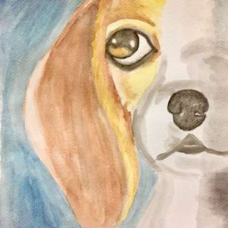 Beagle Face Watercolor Painting