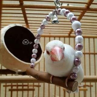 鳥鞦韆-小 (珠光白紫)