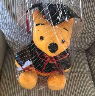 Brand New Graduation bear