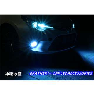 LED COB Fog Light Bulb