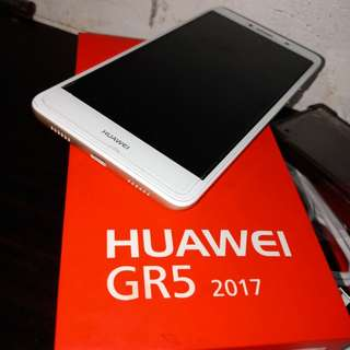 Huaewie GR5 2017