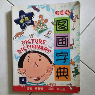 Picture Dictionary Chinese