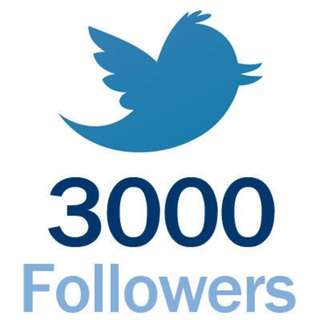 3000 Twitter Followers Limited Promotion