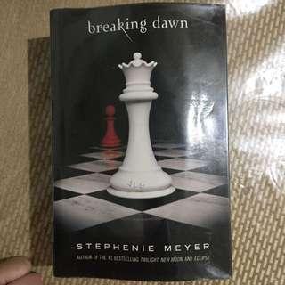 Breaking Dawn Twilight Series