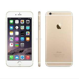 LOOKING FOR iPHONE 6