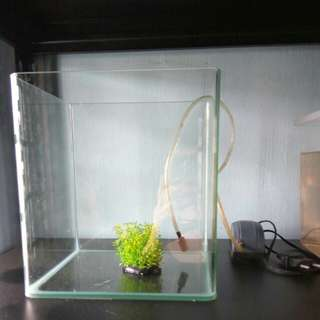 Small fish tank set