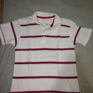 Red stripped Polo Shirt