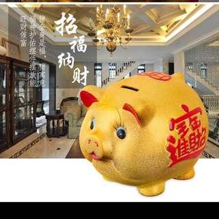 豬豬錢箱 (18cm)