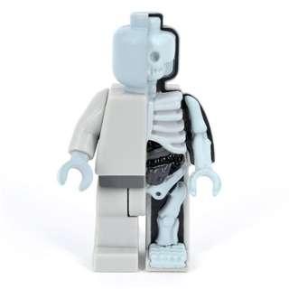 Micro Anatomic Jason Freeny OG