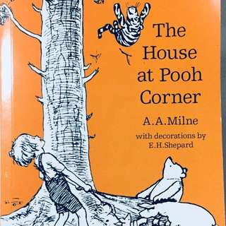 Winnie Pooh book 7+