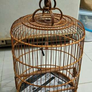 Canary cage with cloth
