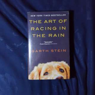 The Art of Racing in the Rain by Stein