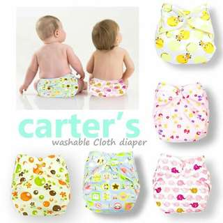 Carter's Cloth Diaper with Insert