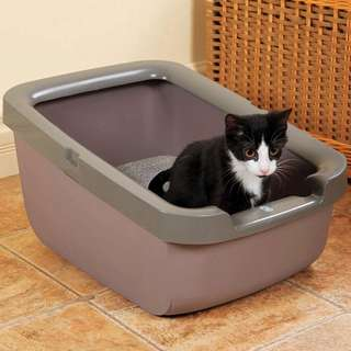 Big Cat Litter Box With Rim by Catit