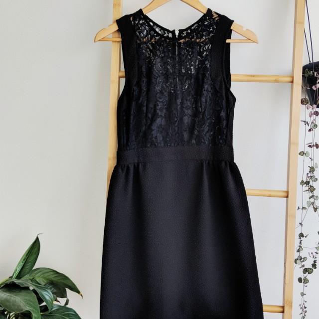 Tokito Lacy little black dress