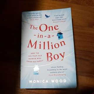 The one in a million boy / monica wood