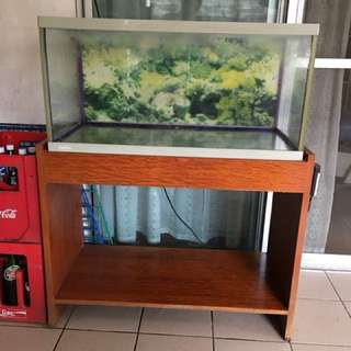 Aquarium and wooden stand