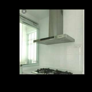 Stainless steel cooker hobs chimney