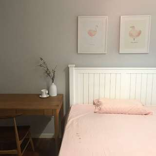 Cosy Room For Rent