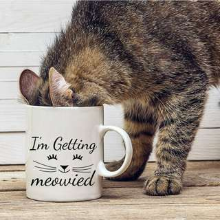 """I'm Getting Meowied"" Ceramic Mug"