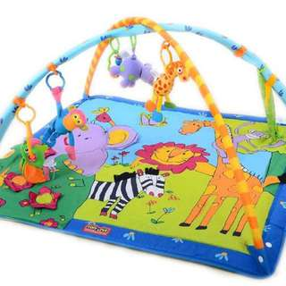 Tiny Love Zoo Baby Gym